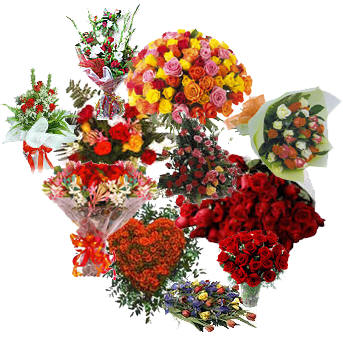 Bunch Of 12 Red Roses, Bunch Of 12 Assorted Flowers, Basket Of 30 Mixed Colored Roses, Bunch Of 24 Red Roses, Heart Shaped Arrangement Of 50 Red Roses, 18 Red Roses In A Vase, Basket Of 36 Red Roses And An Arrangement Of Assorted Flowers