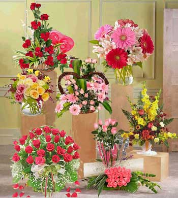 Basket Of 12 Red Roses, 24 Mixed Colored Roses In A Vase, Arrangement Of 50 Red Roses, 6 Gerberas And 6 Roses In A Vase, Basket Of 10 Gerberas And 10 Roses, 12 Pink Roses In A Vase, Arrangement Of 20 Pink Roses And Basket Of Assorted Flowers
