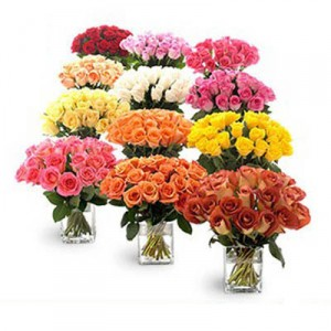 12 Vases Having 24 Roses Each Of Different Colors