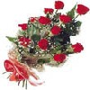 12 Exclusive Red Dutch Roses Bunch