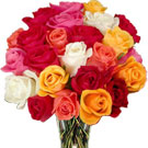 24 Mixed Roses Bunch
